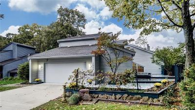 Centerville Single Family Home Active/Pending: 5004 Alpine Rose Court