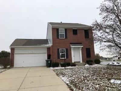 Troy Single Family Home For Sale: 1173 Parkview Drive