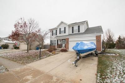 Single Family Home For Sale: 6257 Autumn Meadows Drive