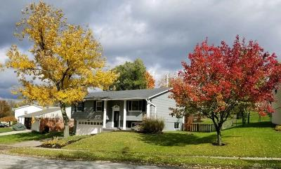 Dayton Single Family Home For Sale: 337 Graceland Drive
