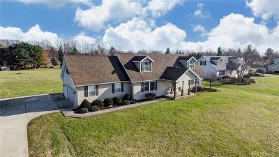 Single Family Home For Sale: 4100 Joshane Street