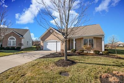 Tipp City Single Family Home For Sale: 9603 Rose Petal Drive