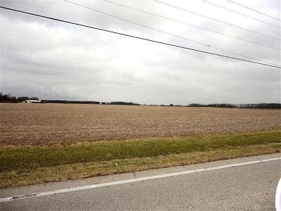 Clinton County Residential Lots & Land For Sale: 1 State Route 134