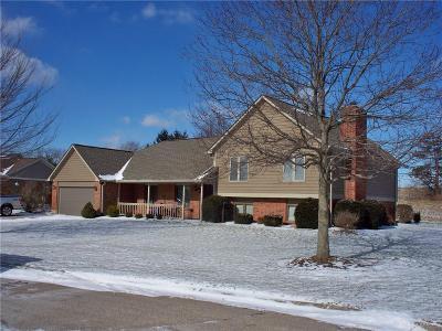 Dayton Single Family Home For Sale: 7721 Turtlehead Court