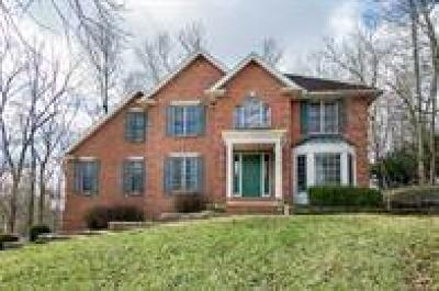 Single Family Home For Sale: 4205 Stone Bridge Drive