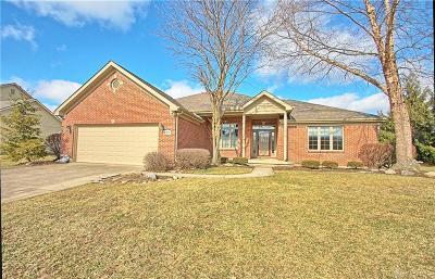 Centerville Single Family Home Pending/Show for Backup: 481 Maple Springs Drive