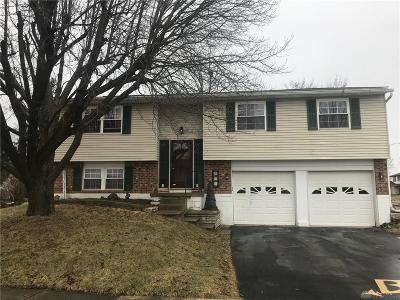 Vandalia Single Family Home For Sale: 724 Estelle Drive