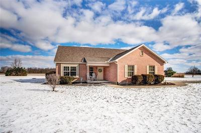 Clinton County Single Family Home Pending/Show for Backup: 381 Port William Road