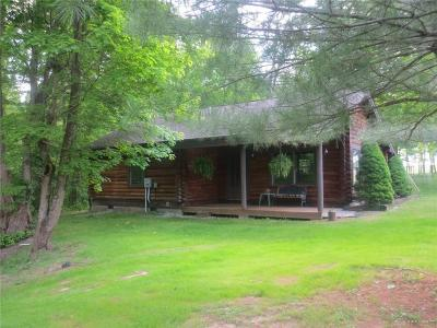 Clinton County Single Family Home For Sale: 1467 Hiatt Road