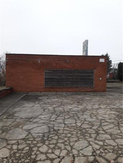 Greene County Residential Lots & Land For Sale: 217 State Street