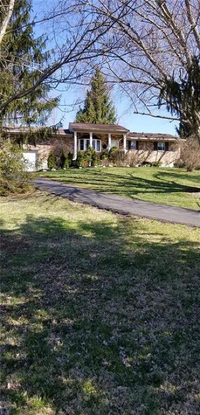 Clinton County Single Family Home For Sale: 1171 Beechgrove Road