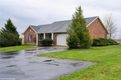 Clinton County Single Family Home For Sale: 3770 Antioch