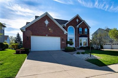 Springboro Single Family Home For Sale: 80 Janney Lane