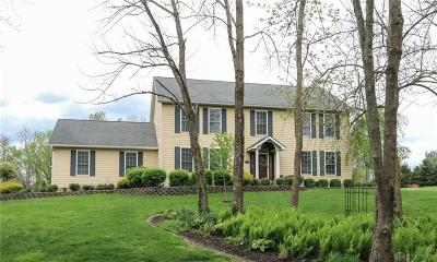 Clinton County Single Family Home Pending/Show for Backup: 8290 State Route 22 & 3
