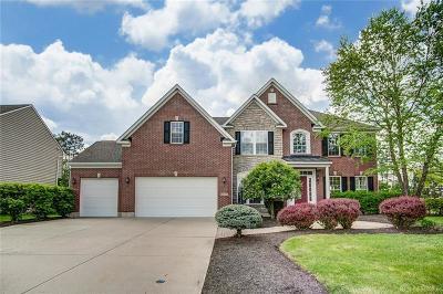 Vandalia Single Family Home For Sale: 1507 Middle Park Drive