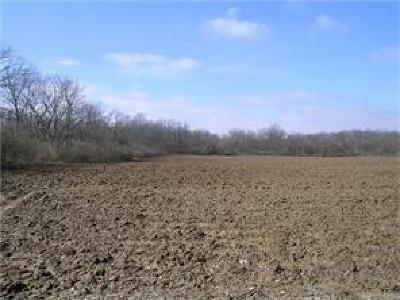 Residential Lots & Land For Sale: 9237 Dog Leg Road