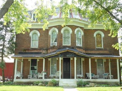 Clinton County Single Family Home For Sale: 183 Second Street
