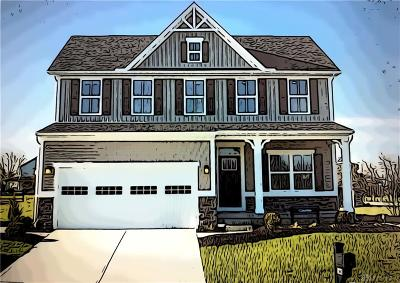 Tipp City Single Family Home For Sale: 909 Cedar Grove Drive