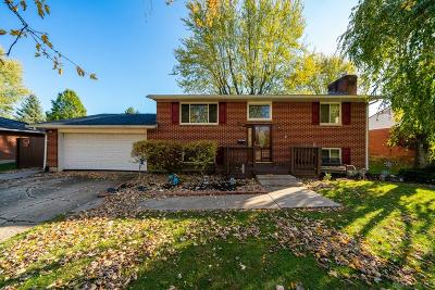 Vandalia Single Family Home For Sale: 1038 Romanus Drive