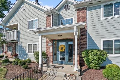 Montgomery County Condo/Townhouse For Sale: 6591 Brigham Square #7