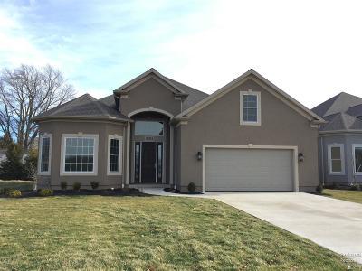 Sandusky Single Family Home For Sale: 3010 Angels Pointe Drive