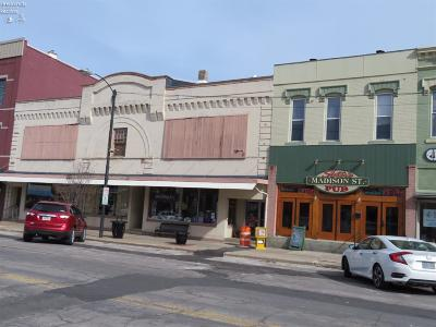 Port Clinton Commercial For Sale: 105 Madison Street