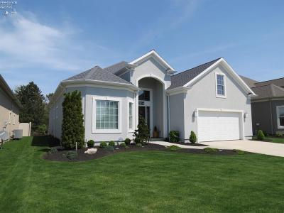 Sandusky Single Family Home For Sale: 3016 Angels Pointe