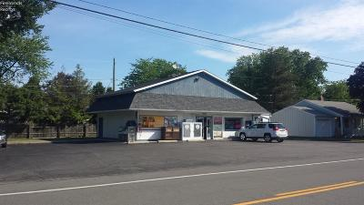 Vermilion Commercial For Sale: 12207 Lake Road