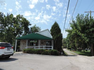 Port Clinton Commercial For Sale: 620 Jefferson Street