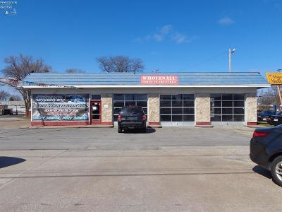 Sandusky Commercial For Sale: 133 W Perkins Ave