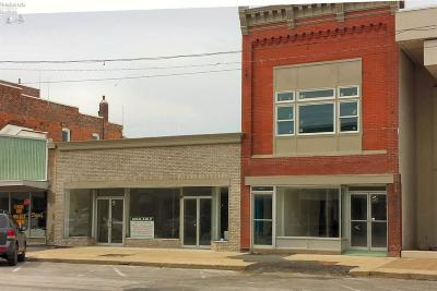 Port Clinton Commercial For Sale: 122 Madison Street