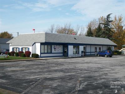 Vermilion Commercial For Sale: 4450 W Liberty Avenue