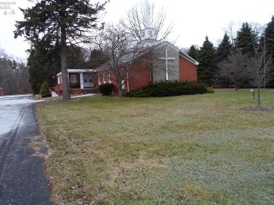 Milan Commercial For Sale: 1608 State Route 113
