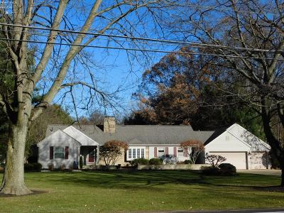 Milan Single Family Home For Sale: 206 Main Street