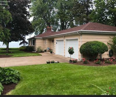 Huron Single Family Home For Sale: 206 Fremont Avenue