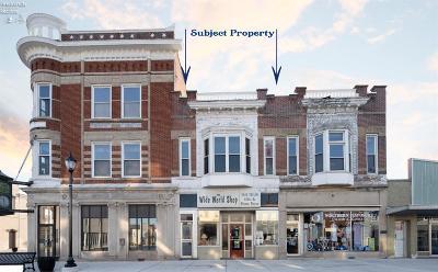 Port Clinton Commercial For Sale: 130 Madison