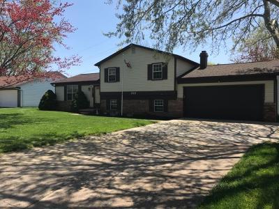 Sandusky Single Family Home For Sale: 202 Birchwood Drive