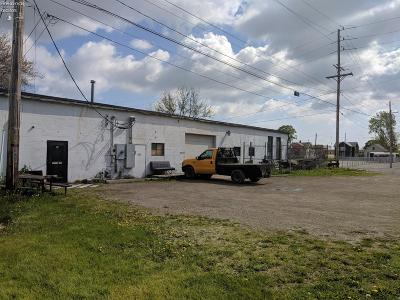 Port Clinton Commercial For Sale: 420 W 2nd Street