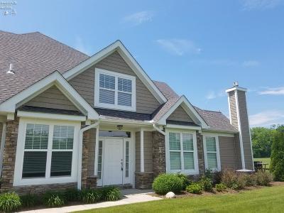 Port Clinton Condo/Townhouse For Sale: 4829 Tradewinds Drive