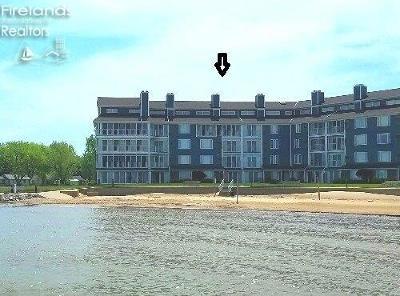 Port Clinton Condo/Townhouse For Sale: 1909 E Harbor Road #405 E