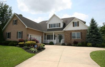 Sandusky Single Family Home For Sale: 4105 Pebble Lane