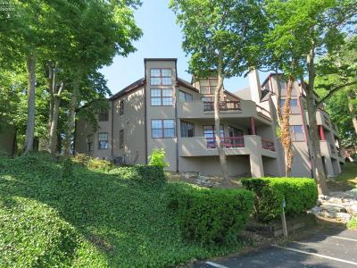Port Clinton Condo/Townhouse For Sale: 4333 Marin Woods #F