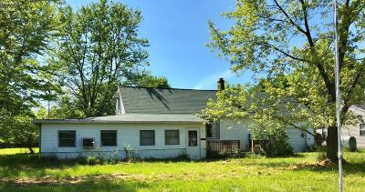 Kelleys Island Single Family Home For Sale: 333 Harbor Lane