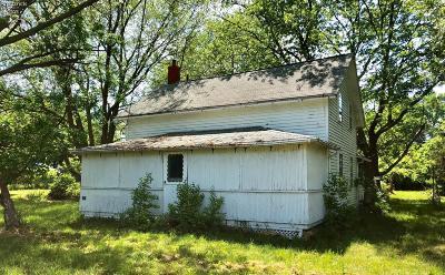 Kelleys Island Single Family Home For Sale: 321 Harbor Lane