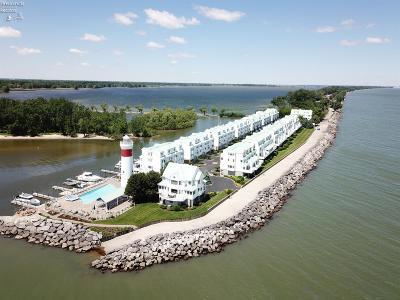 Sandusky Condo/Townhouse For Sale: 30 Cedar Point Road #C