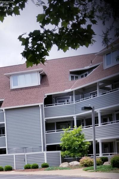 Sandusky Condo/Townhouse For Sale: 97 Marina Point Drive