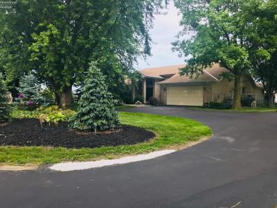 Huron Single Family Home For Sale: 8918 Mudbrook Road
