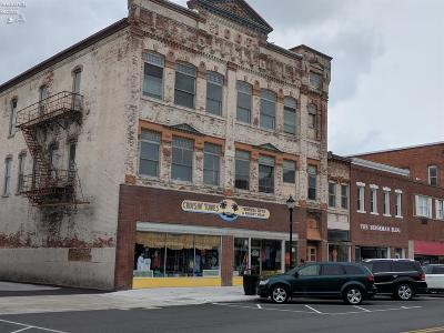 Port Clinton Commercial For Sale: 116 Madison Street