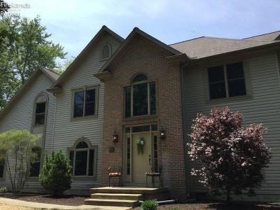 Huron OH Single Family Home For Sale: $398,000