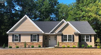 Vermilion Single Family Home For Sale: 600 E Sunnyside Road